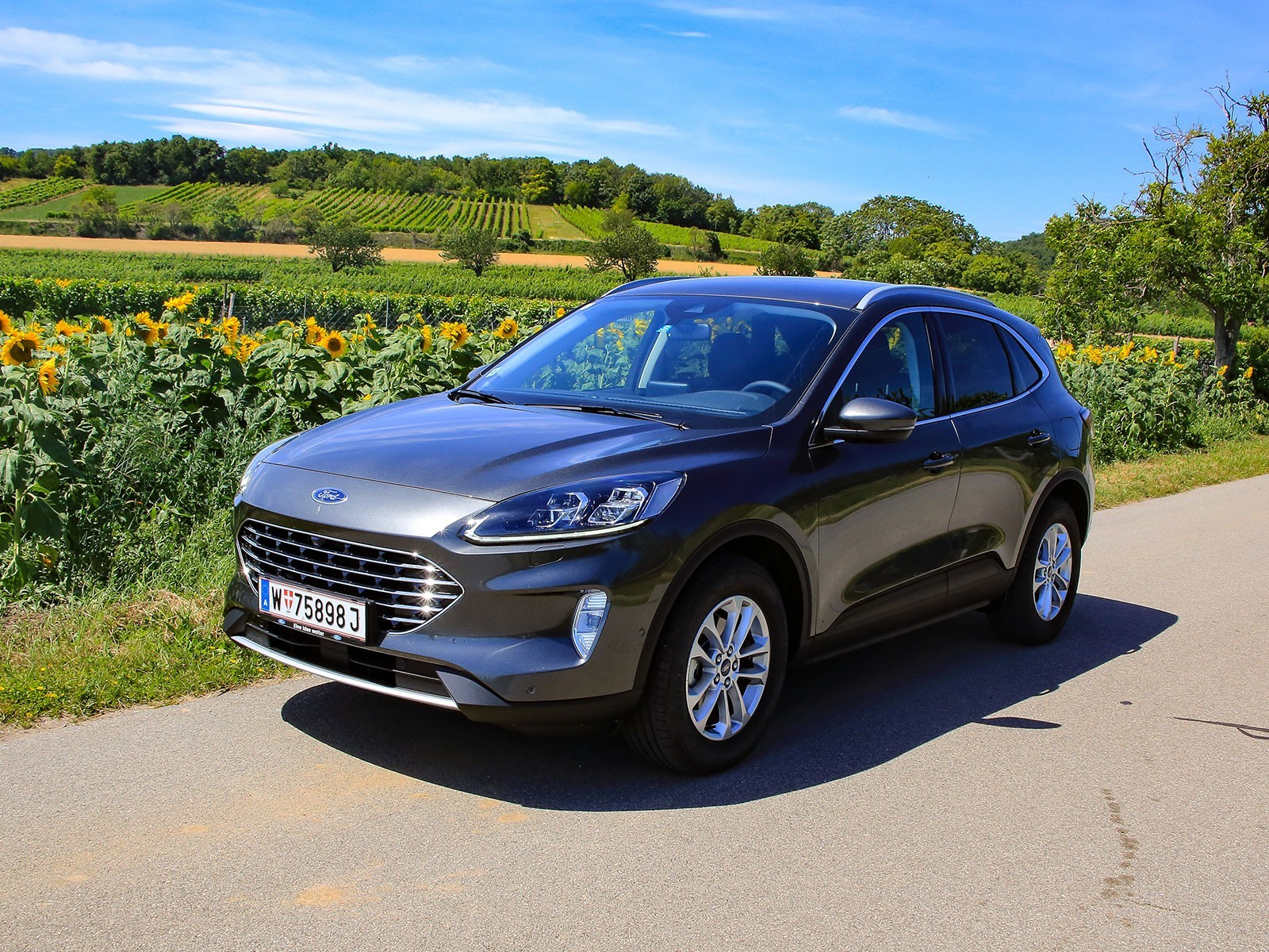 Ford Kuga 2,0 EcoBlue mHEV Frontansicht