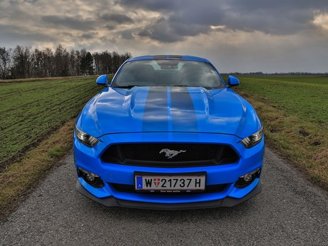 Ford mustang fastback 5 0 gt blue edition testbericht 010
