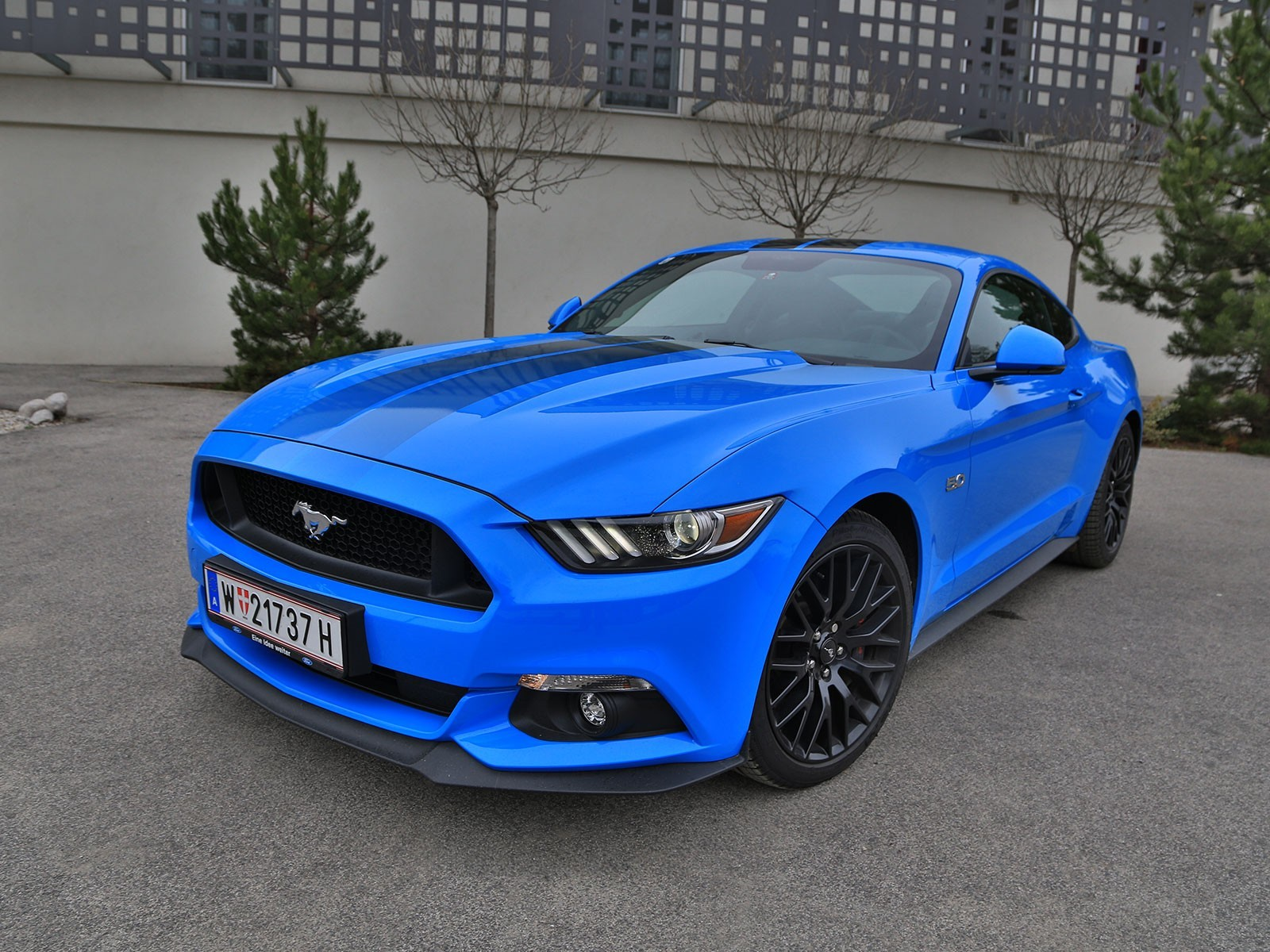 foto ford mustang fastback 5 0 gt blue edition testbericht vom artikel ford mustang 5 0. Black Bedroom Furniture Sets. Home Design Ideas