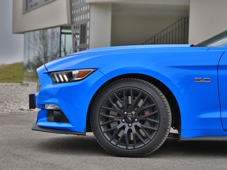 Ford mustang fastback 5 0 gt blue edition testbericht 023